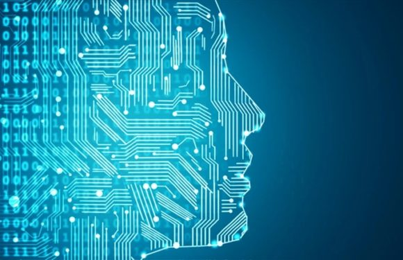 Immigration and artificial intelligence: a 'digital hostile environment'?