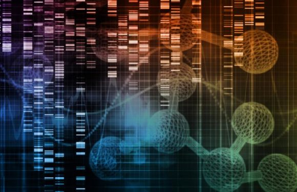 Machine learning helps grow artificial organs