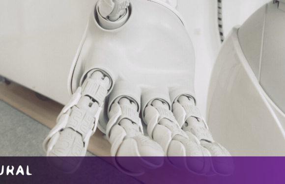 Weird AI illustrates why algorithms still need people