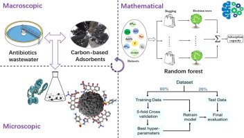 Machine learning for the selection of carbon-based materials for tetracycline and sulfamethoxazole adsorption