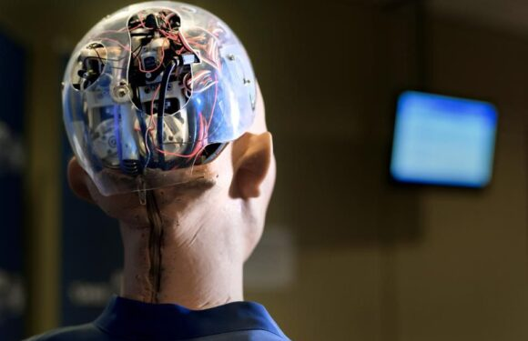 Can We Trust AI? When AI Asks For Human Help
