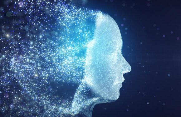 Understanding The Value Of Artificial Intelligence Solutions In Your Business