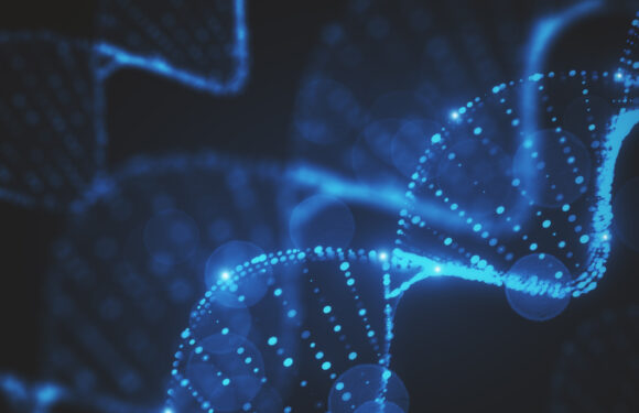 Artificial intelligence can help spot traces of natural selection