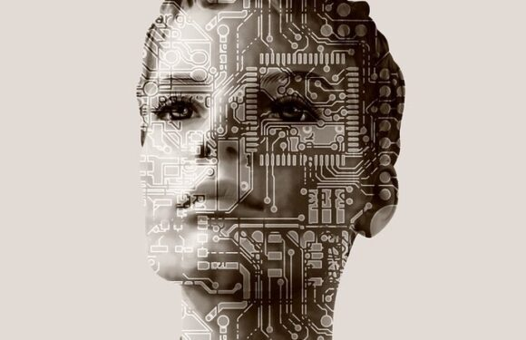 Trust In Artificial Intelligence, But Not Blindly