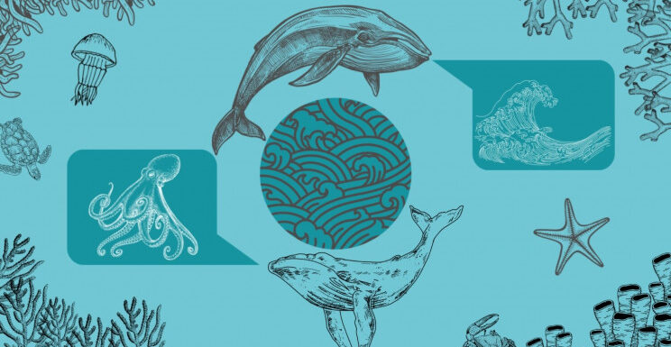 Talking to Animals: Using AI to Decode the Language of Whales