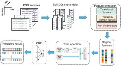 Automatic Sleep Staging Algorithm Based on Time Attention Mechanism